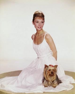 Audrey Hepburn poster G107069