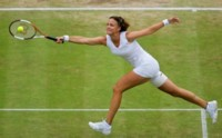 Lindsay Davenport picture G124447