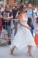 Minka Kelly picture G1460555