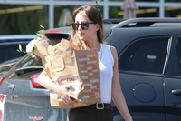 Dakota Johnson picture G1506316