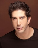 David Schwimmer picture G562996