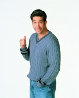 David Schwimmer picture G166094