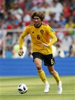Marouane Fellaini picture G1590737