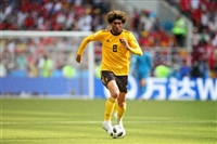 Marouane Fellaini picture G1590746