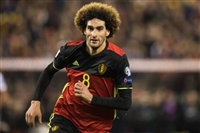 Marouane Fellaini picture G1590763