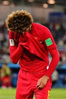 Marouane Fellaini picture G1590782