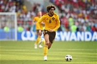 Marouane Fellaini picture G1590783