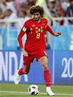 Marouane Fellaini picture G1590799