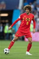 Marouane Fellaini picture G1590800