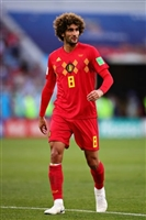 Marouane Fellaini picture G1590801