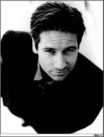 David Duchovny picture G15921
