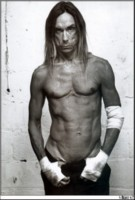 Iggy Pop picture G16133