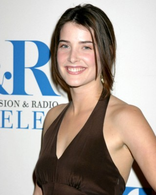 Cobie Smulders poster G167056