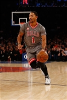 Derrick Rose picture G1684512