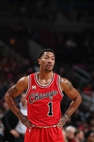 Derrick Rose picture G1684525
