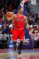 Derrick Rose picture G1684564