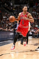 Derrick Rose picture G1684586