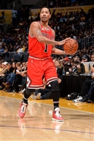 Derrick Rose picture G1684595