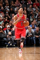 Derrick Rose picture G1684599