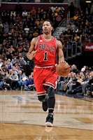 Derrick Rose picture G1684601