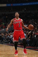 Derrick Rose picture G1684622