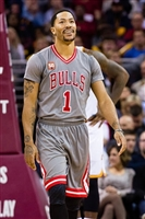 Derrick Rose picture G1684647