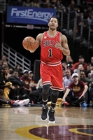 Derrick Rose picture G1684655