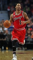 Derrick Rose picture G1684667