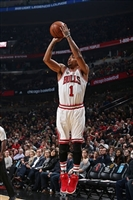 Derrick Rose picture G1684686