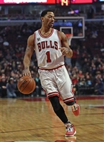 Derrick Rose picture G1684690