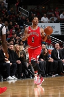 Derrick Rose picture G1684692
