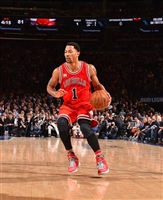 Derrick Rose picture G1684703