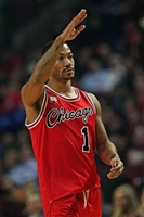 Derrick Rose picture G313105