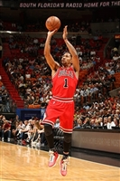 Derrick Rose picture G329097