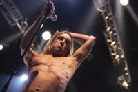 Iggy Pop picture G192521