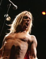 Iggy Pop picture G192522