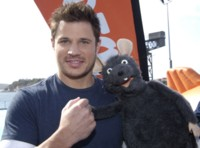 Nick Lachey picture G212159