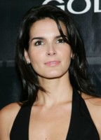 Angie Harmon picture G216133