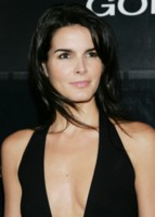 Angie Harmon picture G216135