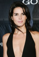 Angie Harmon picture G216138