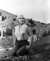Marilyn Monroe picture G220110