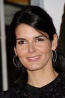 Angie Harmon picture G222671