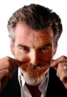 Pierce Brosnan picture G225560