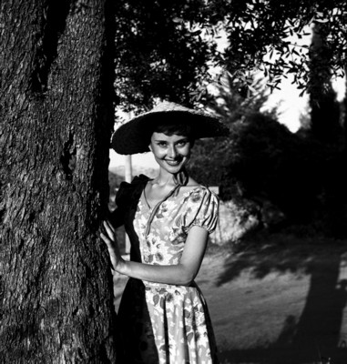 Audrey Hepburn poster G226117