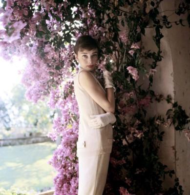 Audrey Hepburn poster G300566