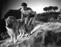 Buster Crabbe picture G301552
