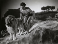 Buster Crabbe picture G301553