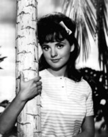 Dawn Wells picture G302989