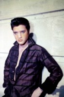 Elvis Presley picture G303682