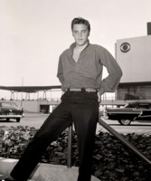 Elvis Presley picture G303693